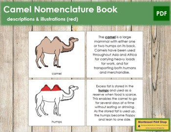 Camel Nomenclature Book (Red)