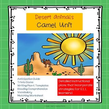 Camel Unit