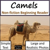 Camels: Non-fiction animal e-book for beginning readers