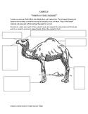 Camels: Ships of the Desert