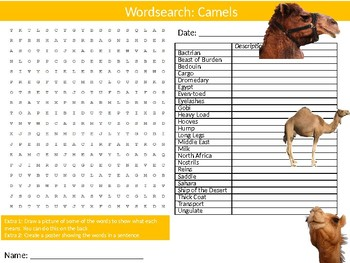Camels Wordsearch Puzzle Sheet Keywords Animals Nature Biology