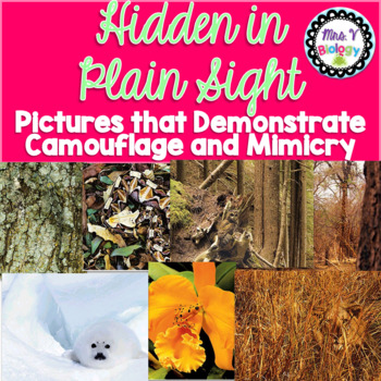 Hidden in Plain Sight: Camouflage and Mimicry
