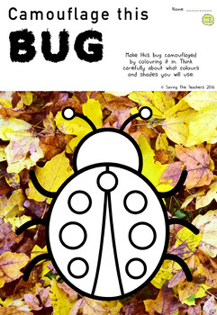 Camouflage Activity - Fun and Engaging Worksheet