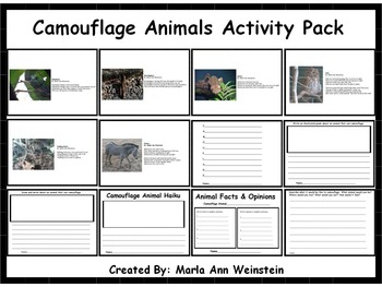 Camouflage Animals Activity Pack
