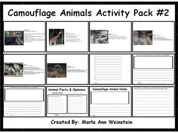 Camouflage Animals Activity Pack #2