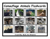 Camouflage Animals Flashcards