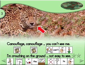 Camouflage - Animated Step-by-Step Science Resource - SymbolStix