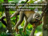 Camouflage, Chemicals, Communication - Amazing Adaptations for Survival EPUB