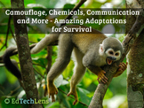 Camouflage, Chemicals, Communication, and More - Adaptations for Survival PDF