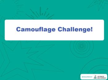 Camouflage Fun