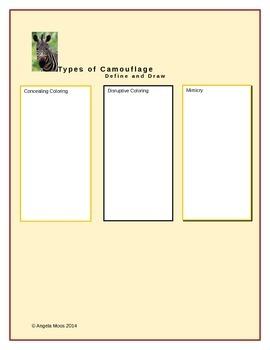 Camouflage Graphic Organizer