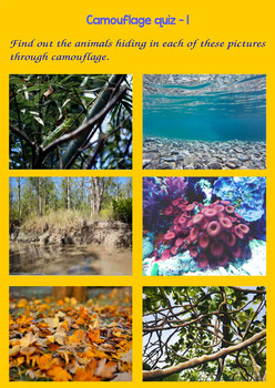 Camouflage : Science is everywhere, Printables & Task cards (Quiz)