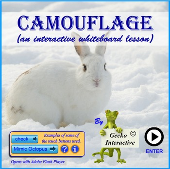 Camouflage - an Interactive SmartBoard and Whiteboard lesson
