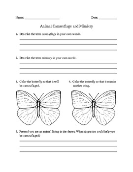 camouflage and mimicry worksheet by lanni teachers pay teachers. Black Bedroom Furniture Sets. Home Design Ideas
