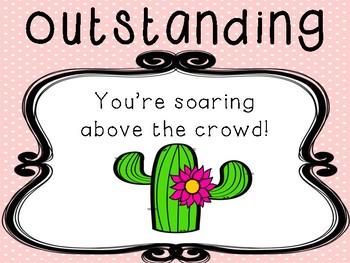 Cactus Behaviour Management Chart