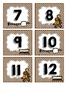 Camping Calendar Numbers