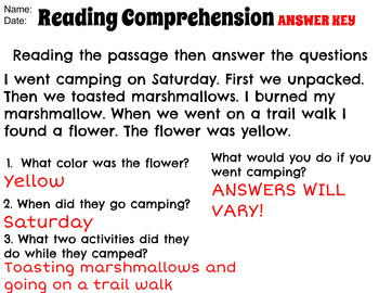 Camping Fun! Reading passage & questions