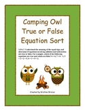 Camping Owls True False Equation Sort