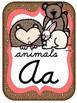 Camping Theme Alphabet Cards CURSIVE