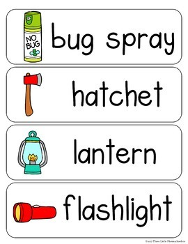 Camping Vocabulary Word Wall Cards plus Write and Wipe version