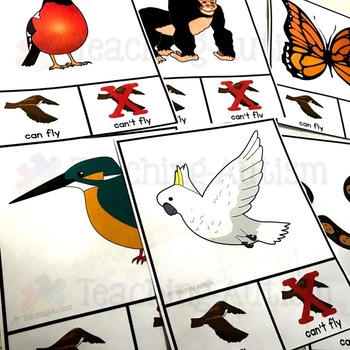 Can Fly V Can't Fly Sorting Task Cards