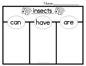 Can, Have, Are Chart- INSECTS (Tree Map)
