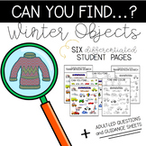 Can You Find: Winter Objects