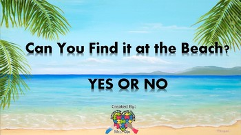 Can You Find it at the Beach - YES/NO Interactive Book