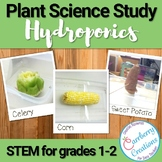 Basic Needs of Plants Experiment and Science Journal