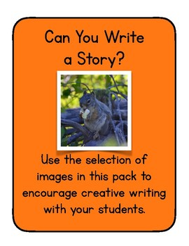 Can You Write a Story?