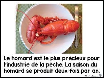 Canada Mon Pays Voici Lîle-du-Prince-Édouard