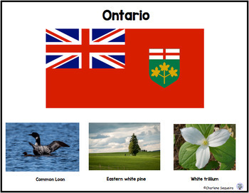 Canada My Country Flags and Symbols