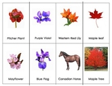 Canadian Floral Emblems Three Part Cards