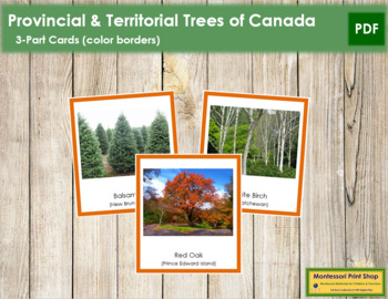 Canadian Provincial Trees: 3-Part Cards (color borders)