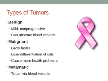 Cancer Cell Biology Powerpoint