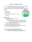 Cancer and Cell Cycle Assessment