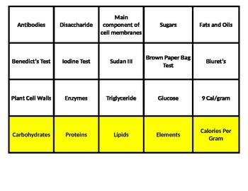 Biochemistry (Biological Macromolecules) Card Sort *Editable