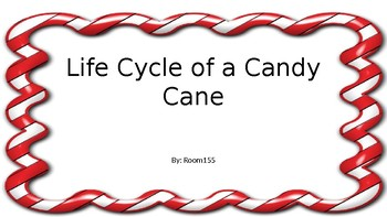 Candy Cane Life Cycle