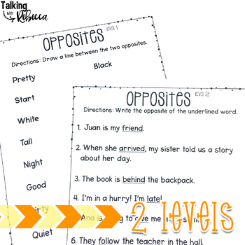 Fall Halloween Antonym Cards and Worksheets