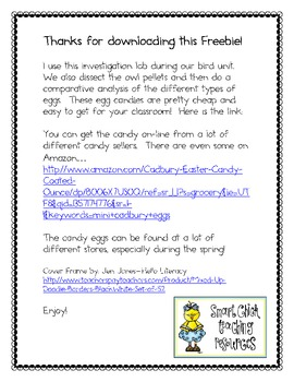 Candy Egg Investigation ~ Great for the Spring or a Bird Unit!