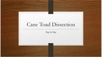 Cane Toad Dissection Lab Walk-Through