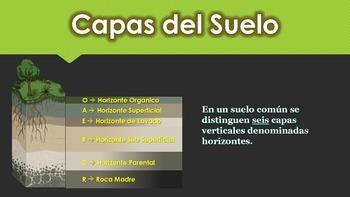 Capas del Suelo Documento PDF (Spanish)