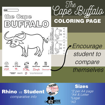 Cape Buffalo Animal Coloring Book Activity