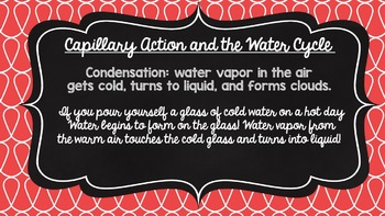Capillary Action + Water Cycle: Presentation, Notes, Activity, and Lab