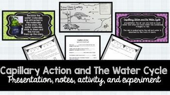 Capillary Action + Water Cycle: Presentation, Notes, Activ