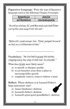 Capital Mysteries BUNDLE (Ron Roy) 3 Novel Studies for Books #1-3  (78 pages)