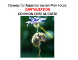 Capitalization in Flowers for Algernon - Lesson Plan, Activities, Handouts