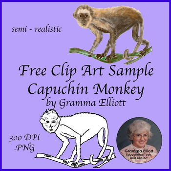 Capuchin Monkey Clip Art Free Sample - semi realistic clip art - 300 dpi - .png