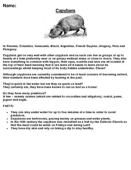 Capybara Article, Summary and Drawing Assignment