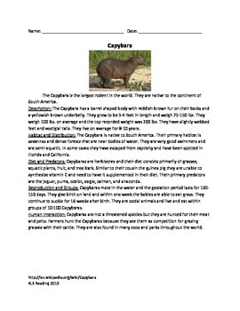 Capybara - Rodent Review Article Information Questions Vocabulary Word Search